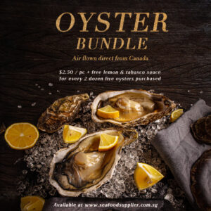 Oysters Bundle Post