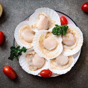 half shell scallop-700×700